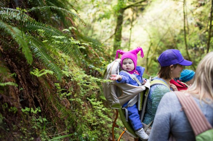 Intro to Family Hiking Plants & Animals