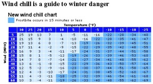 Transitioning the Seasons - Learning to adapt from a warm climate to frozen winter (3)