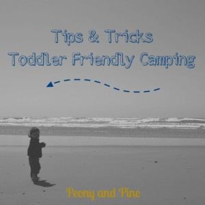 Toddler Friendly Camping Tips and Tricks (1)