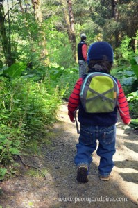 Toddler Friendly Camping Tips and Tricks (3)