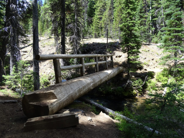 View of the Tumalo Falls trail in the summer, featuring a log bridge
