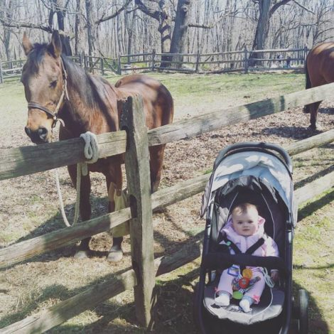 Bee loves horses, just like her mama. She was fascinated with the horses at the April 2016 Jockey Hollow re-enactment days.