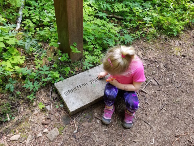 Identifying letters on the trail.