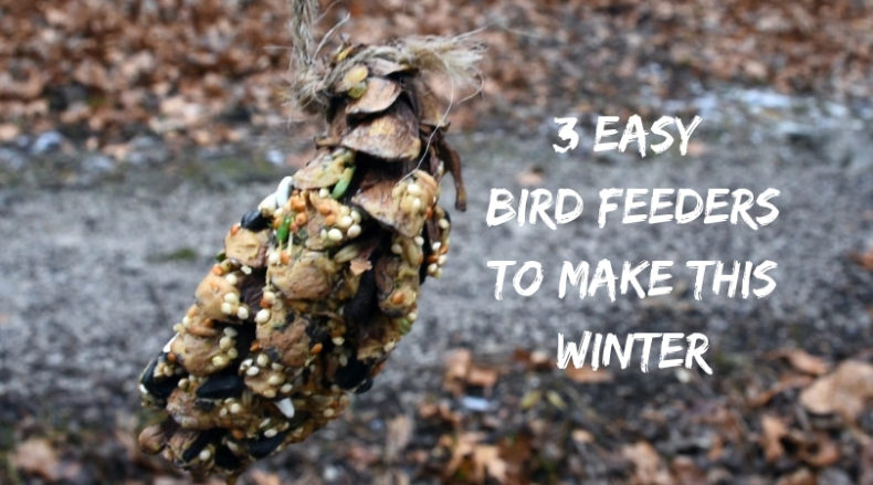 3 Easy bird feeders to make this winter for Hike it Baby