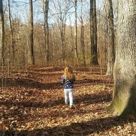 3 Hikes in Ohio for young children by Jessica Nave for Hike it Baby