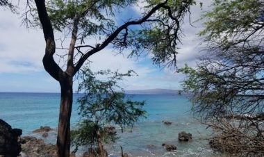 3 Stunning Trails in Hawaii by Vong Hamilton for Hike it Baby