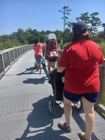 3 Scenic Hikes in Delaware to explore with young children by Rebecca Her for Hike it Baby