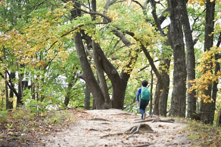 3 Trails to explore in Missouri with young children by Vong Hamilton for Hike it Baby