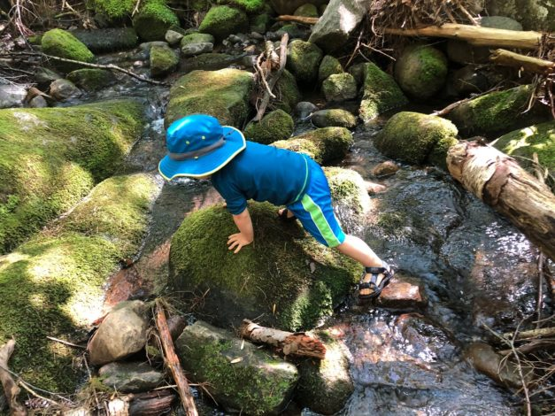 Seeing Adventure Through the Eyes of My Toddler by Rebecca Hosley for Hike it Baby