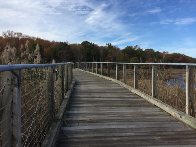 3 Memorable Trails to Explore with Children in Maryland by Rebecca Her for Hike it Baby