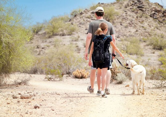 3 Family-Friendly Hikes in Arizona by Frank Tucker for Hike it Baby