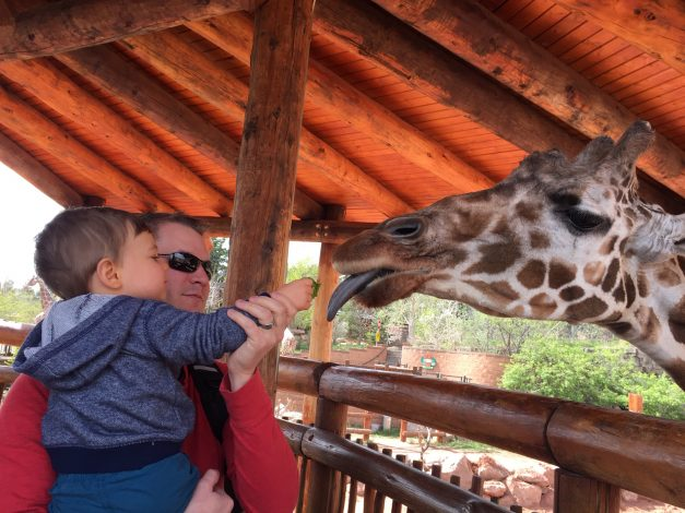 15 Fun Things to do with Kids in Colorado Springs by Rebecca Hosley for Hike it Baby
