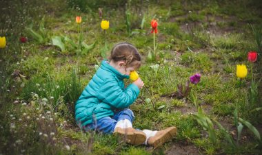 How to celebrate the start of spring by Brenna Jeanneret for Hike it Baby
