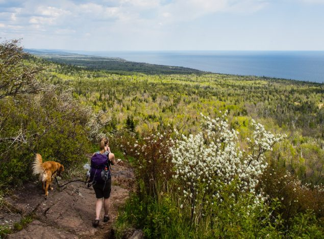 3 Great adventures in Minnesota for families with young kids by Vong Hamilton for Hike it Baby