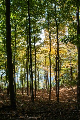 3 Beautiful Hikes for Families With Kids in Indiana by Frank Tucker for Hike it Baby