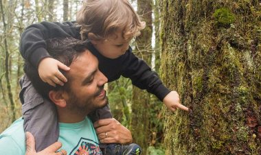 man with baby looking at a tree