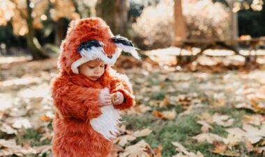Toddler in fox costume