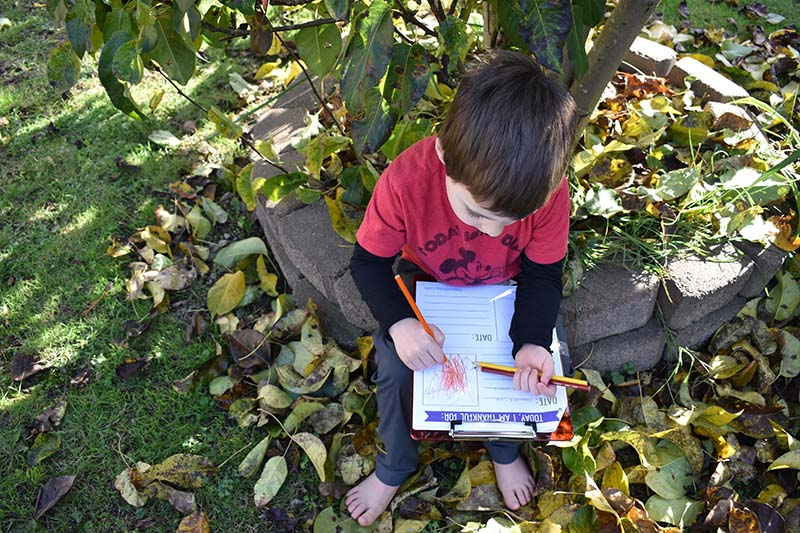 boy working in his thankful for nature journal